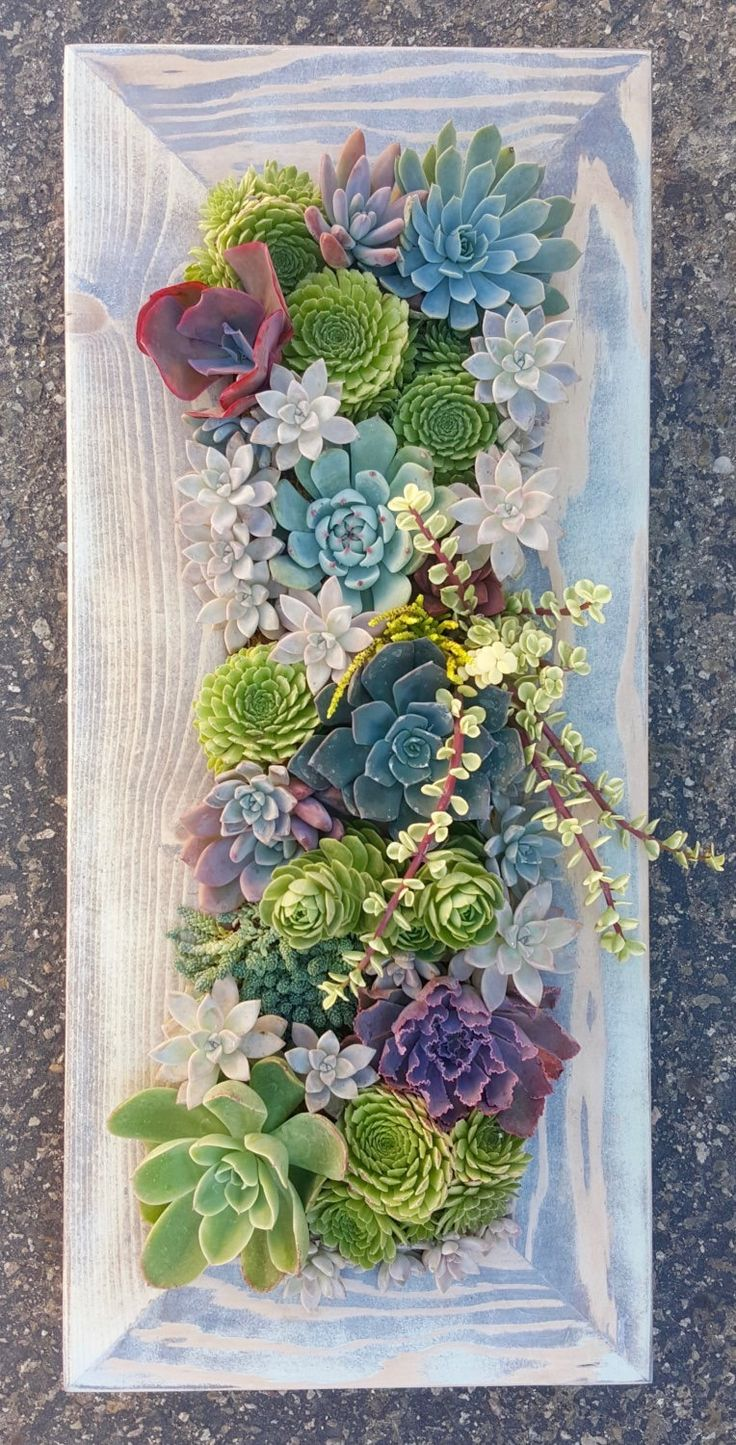 21 creative succulent container gardens you can buy or DIY, like this succulent wonderland framed wooden vertical garden.