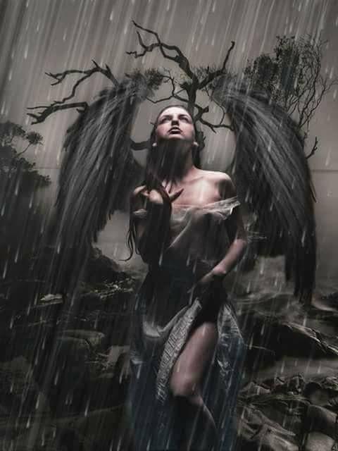 angel in the rain