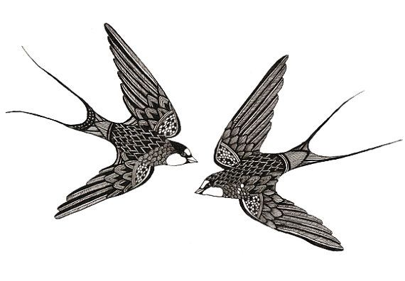 Swifts Art Print 5x7 (would make a nice tattoo)