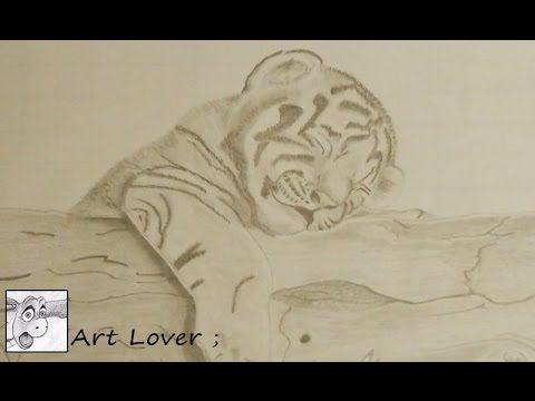 Siberian Tiger Drawing of Cub Pt1