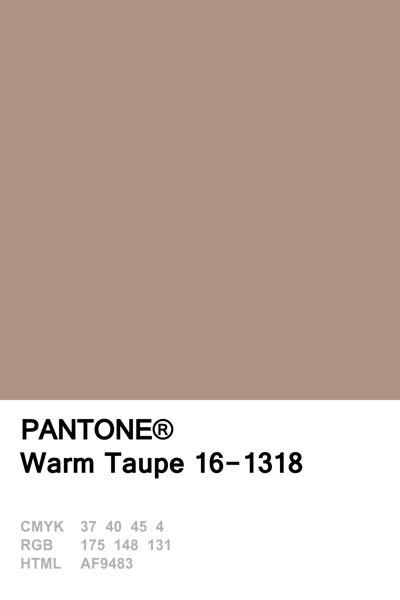 Pantone Fall 2016 • Warm Taupe