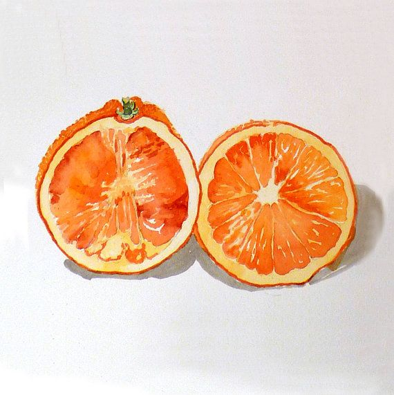 A painting of oranges A print of a watercolor painting door LaBerge