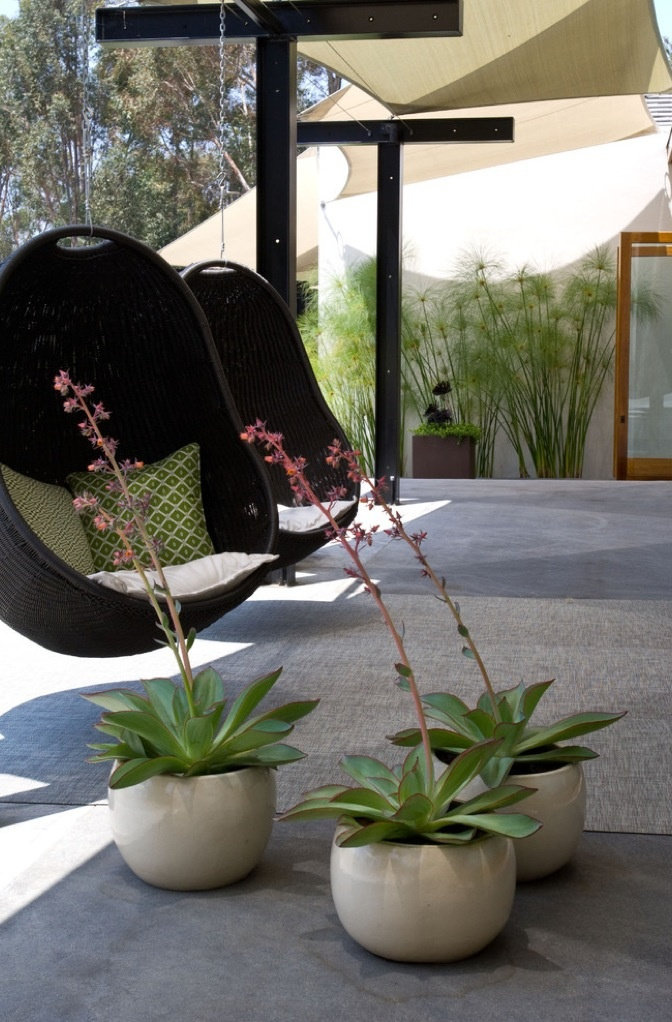 Sweet outdoor living space