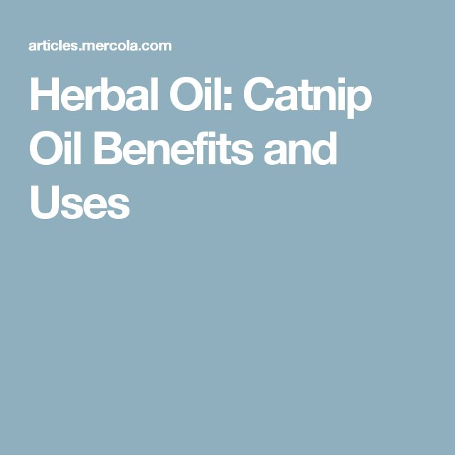 Herbal Oil: Catnip Oil Benefits and Uses