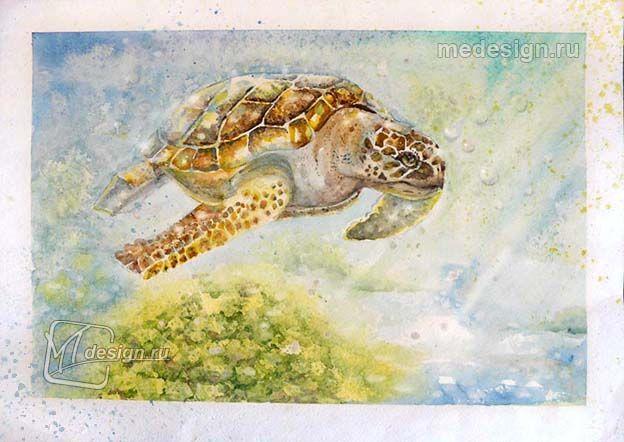 Урок рисования акварелью. Черепаха под водой.