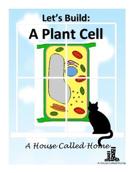 Let's Build: A Plant Cell - A great way to introduce plant cells! FREE!