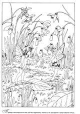 Раскраски Эльфы и Феи. Раскраска с Феями. Fairy colouring book
