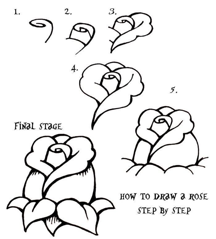 Apprendre Le Dessin Facile Sur Notre Blog Hitart Dessin Chat Dessiner Drawing Draw Art Rose Dessin Rose Tutoriel De Dessin Comment Dessiner Une Rose