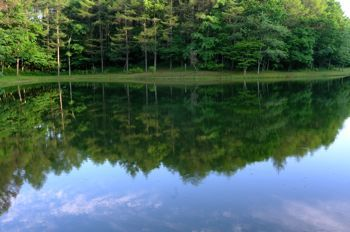 北海道の旅 no.1 ~ 豊かな森と湖 - きょうも まっしろな あさ