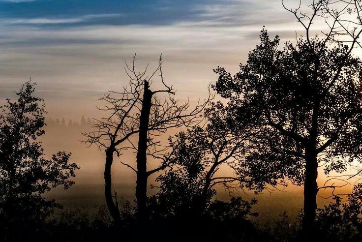 Nature canada contest - my photo