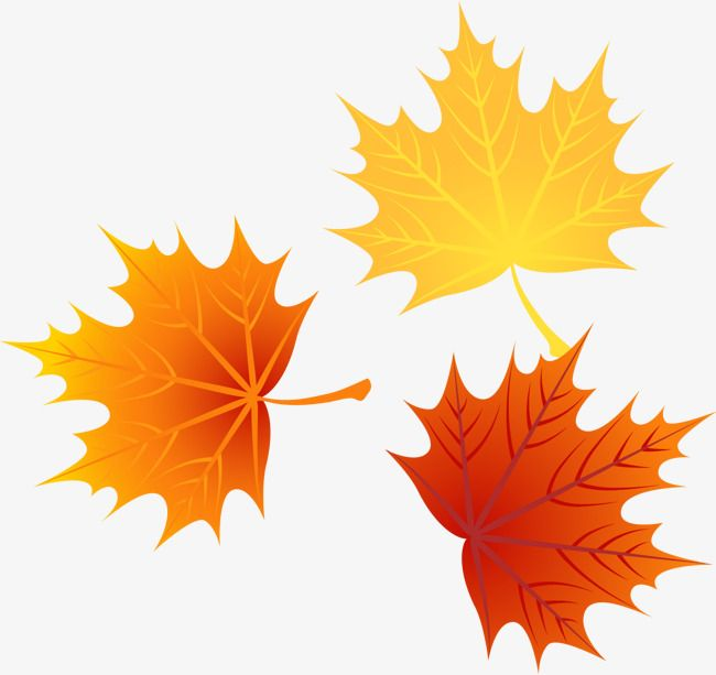 Vector Autumn Leaves 1 Png And Vector Autumn Leaves Autumn Crafts Fall Nail Art