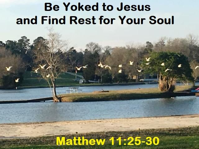 God Morning from Willis, TX  Today is March 3, 2018 Day 62 on the 2018 Journey Make It A Great Day, Everyday  Be Yoked to Jesus and Find Rest for Your Soul Today's Scripture: Matthew 11:25-30 https://www.biblegateway.com/passage/?search=Matthew+11%3A25-30&version=NKJV Come to Me, all you who labor and are heavy laden, and I will give you rest... Inspirational Song https://youtu.be/hdS8O1qTDX8