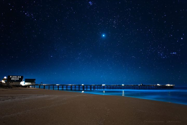 Flagler Beach At Night