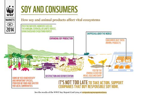Most of us are unaware of how much soy we consume.  © WWF UK