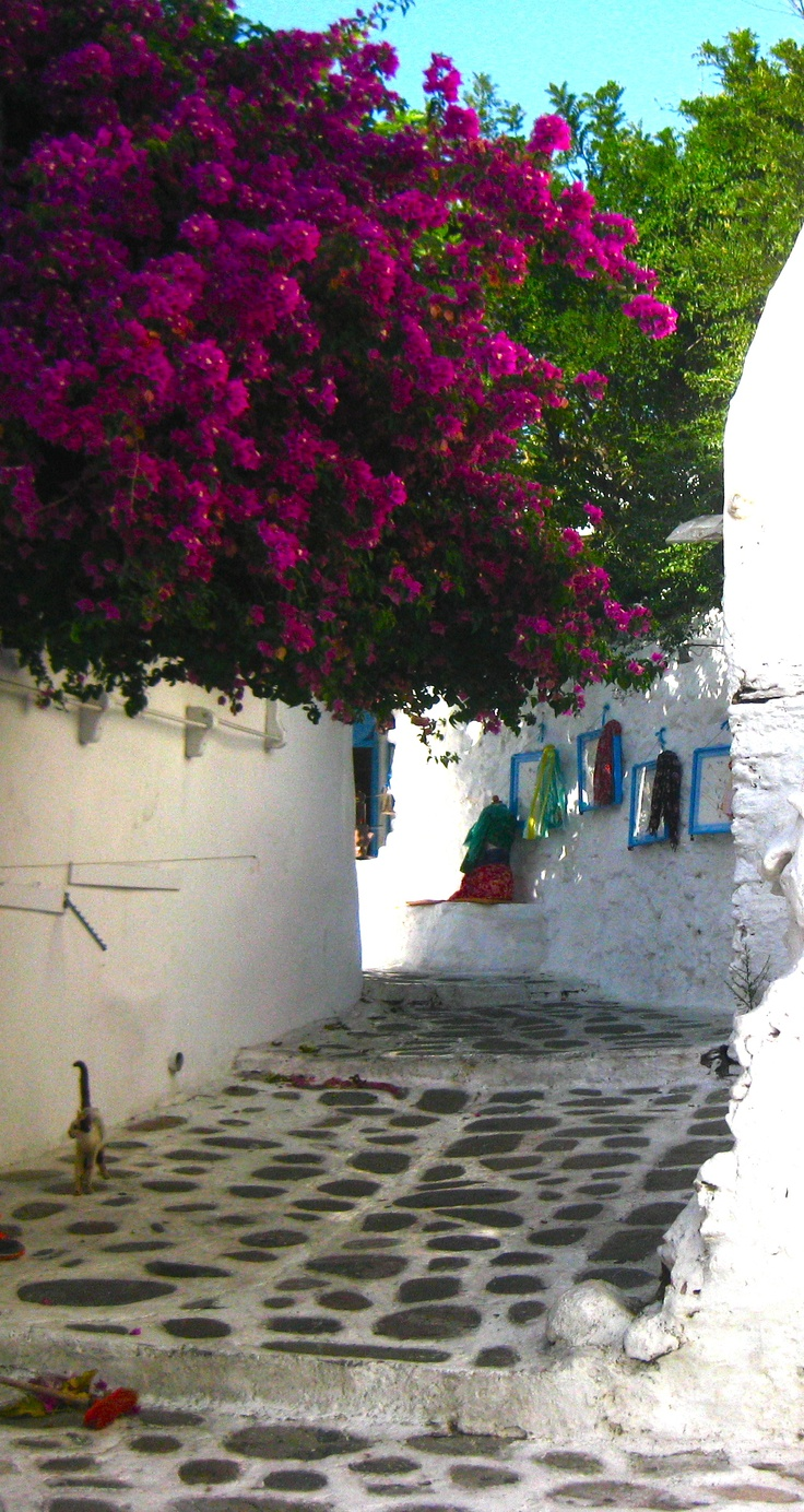 typical street in Aegean town of Bodrum