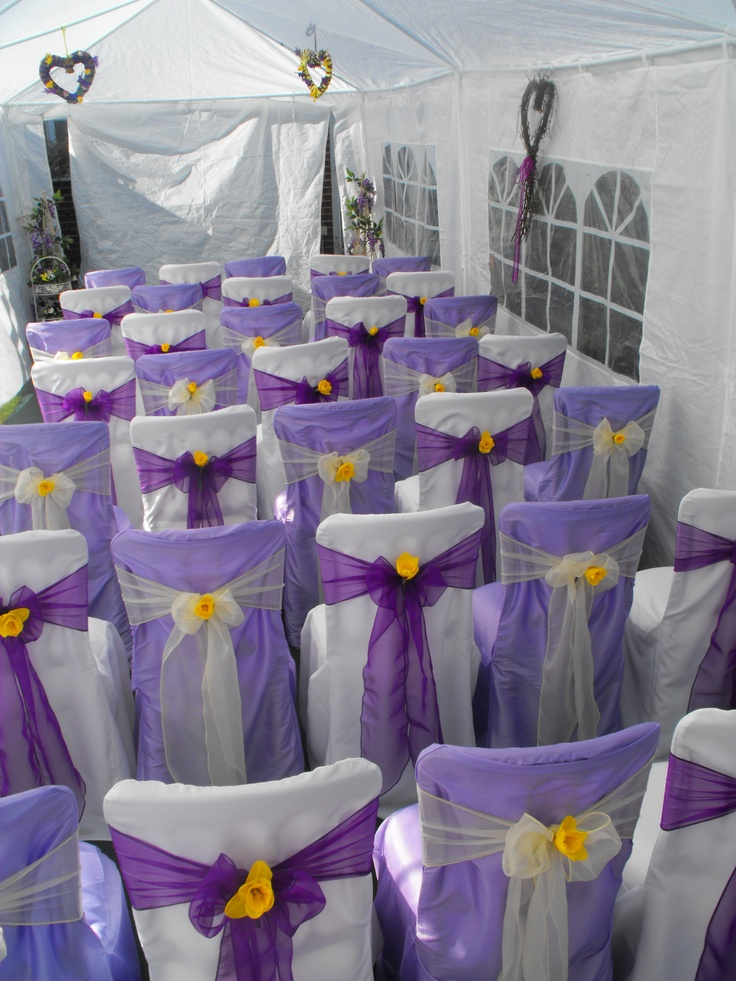 Alternating Lilac and White Chair Covers with Alternating Cadburys Purple and Lemon Organza Bows