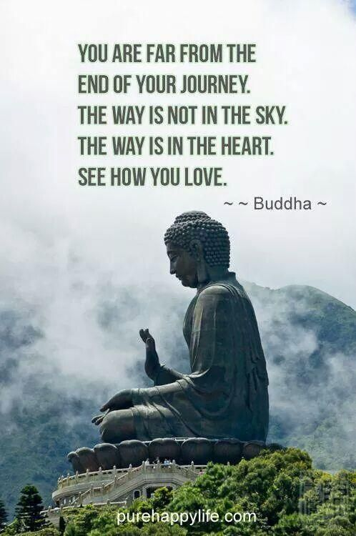 Quotes About Life Buddha Enchanting 541 Best Buddha Images On Pinterest  Buddhism Inspire Quotes And