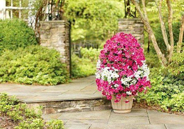 Цветочная башня для сада— супер идея