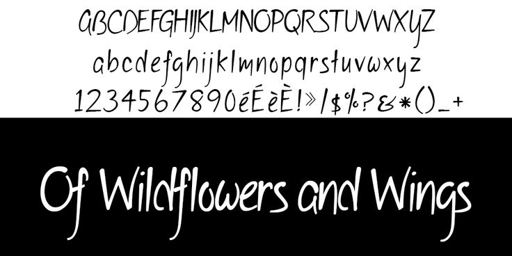 Of Wildflowers and Wings typo