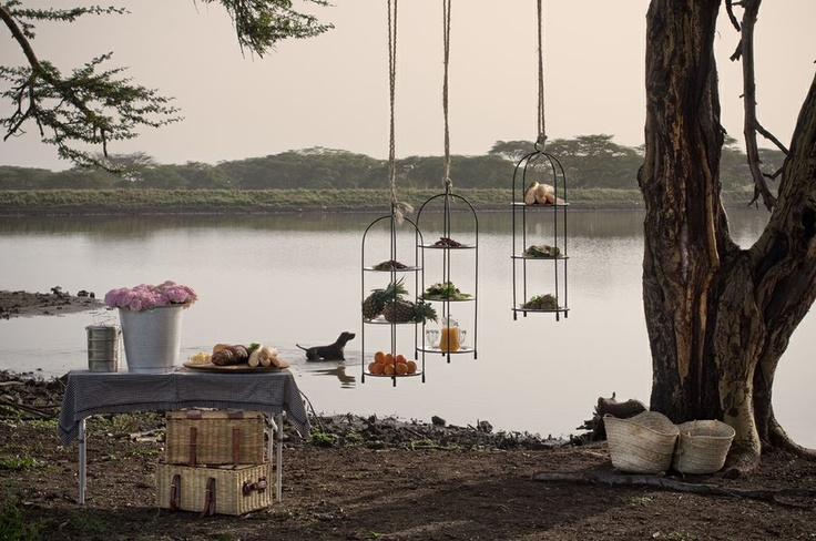 Sira House - bush picnic