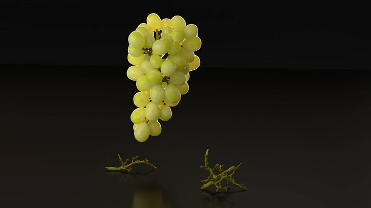 A turntable animation I made with the photorealistic CG-Moa.com 3D model of white grapes. This model has the highest realism possible including real life subsurface scattering and as a bonus a layer with water droplets.  3D Model/scene is now available! CG-Moa.com now also gives away a 100% free model of a shell. vimeo.com/204140339 Instantly usable for Cinema 4D (standard render) and ARNOLD render for C4D (C4DtoA) and as Wavefront object (.obj). You may use this photorealistic 3D model for…