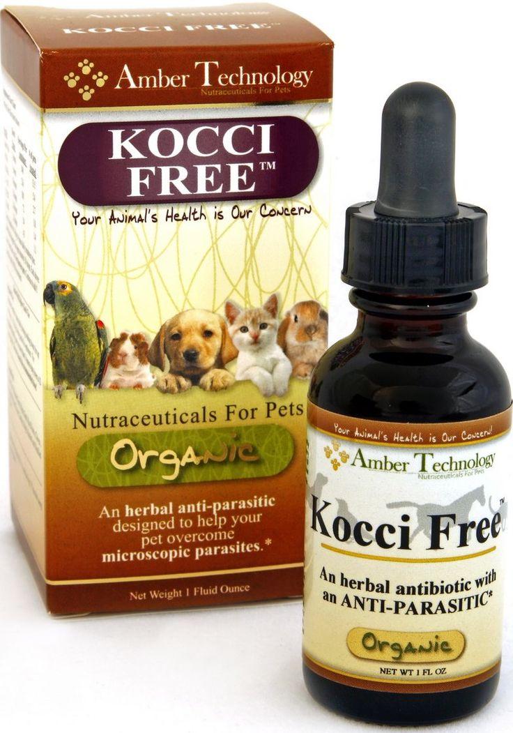 1 oz. Kocci Free eliminates coccidia protozoan better than