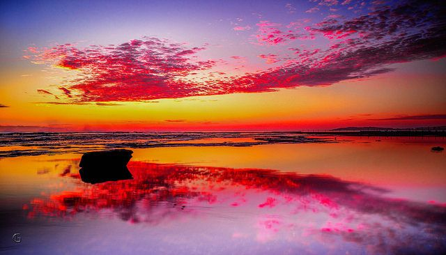 Title: Rhapsody In Red Location: Turimetta Beach