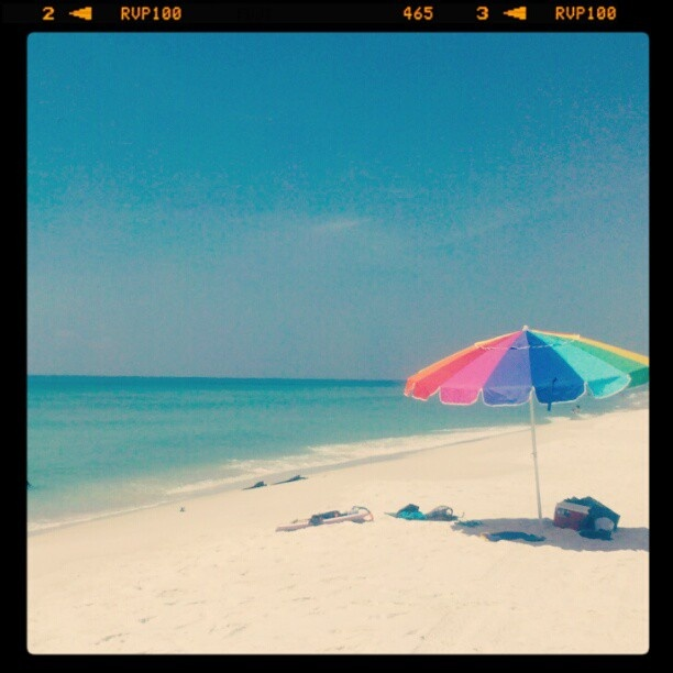 127 best perdido key years images on pinterest at the for Deep sea fishing perdido key