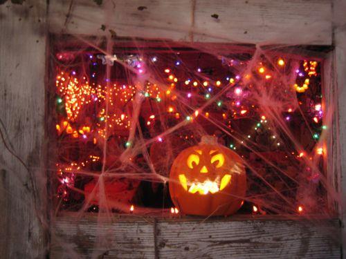 126 best halloween lights decoration ideas images on pinterest happy halloween halloween crafts and halloween stuff - Halloween Lights