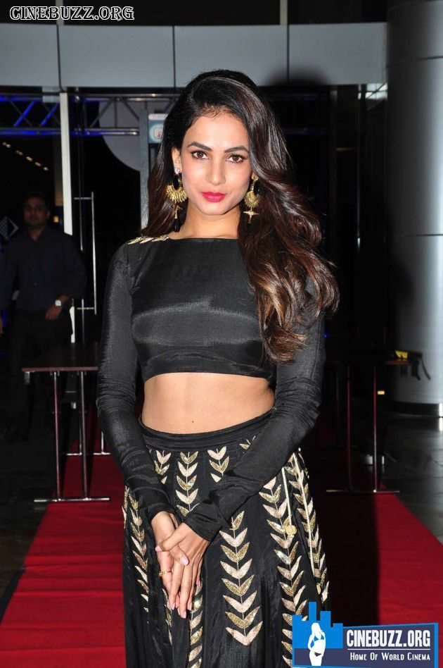 Sizzling Hot Sonal Chauhan At Size Zero Audio in Black Dress