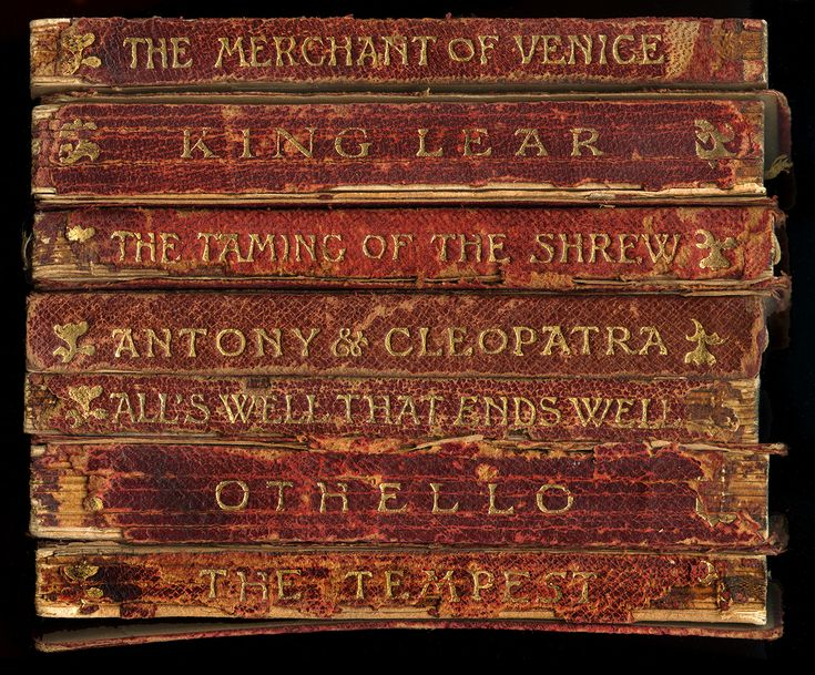 Shakespeare Antique Book Spines Framed Unique Wall Art