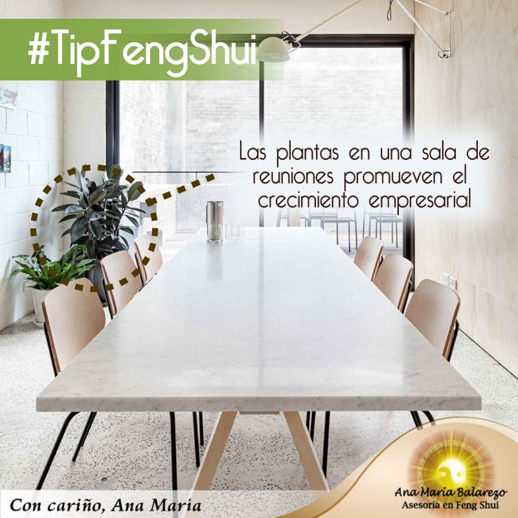 Feng Shui Decorating Tips for the Home Casa Feng Shui, Feng Shui Tips, Feng Shui Your Bedroom, Fen Shui, Planting Flowers, Sweet Home, Relax, Dining Table, House Design