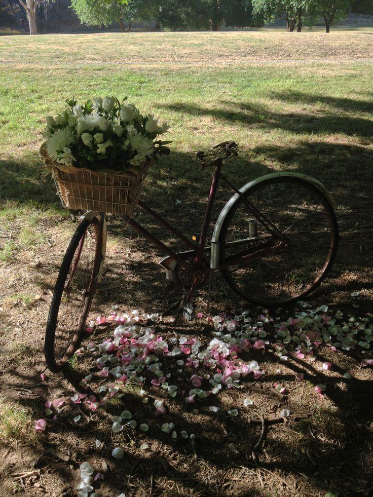Vintage bike and basket with beautiful roses lilys alstromeria & disbud chrysanthemum