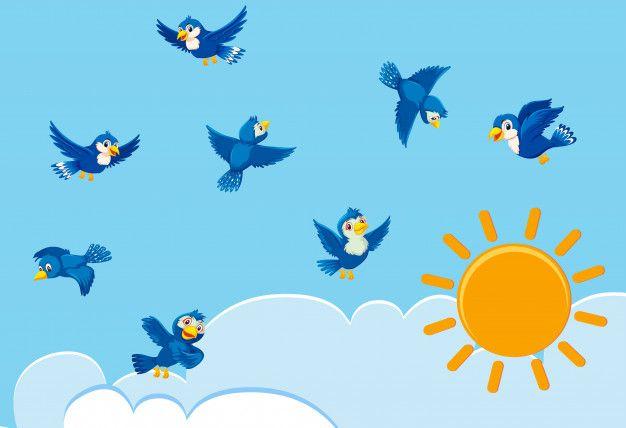 Aves En El Cielo Vector Premium Fondos De Colores Pajaros