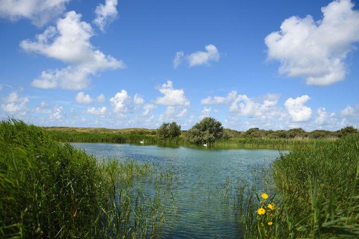 Waterwingebied (foto Alex Keus)