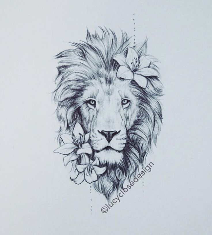 Could be a really great thigh tattoo!,  #great #lionthightattoo #TATTOO #Thigh
