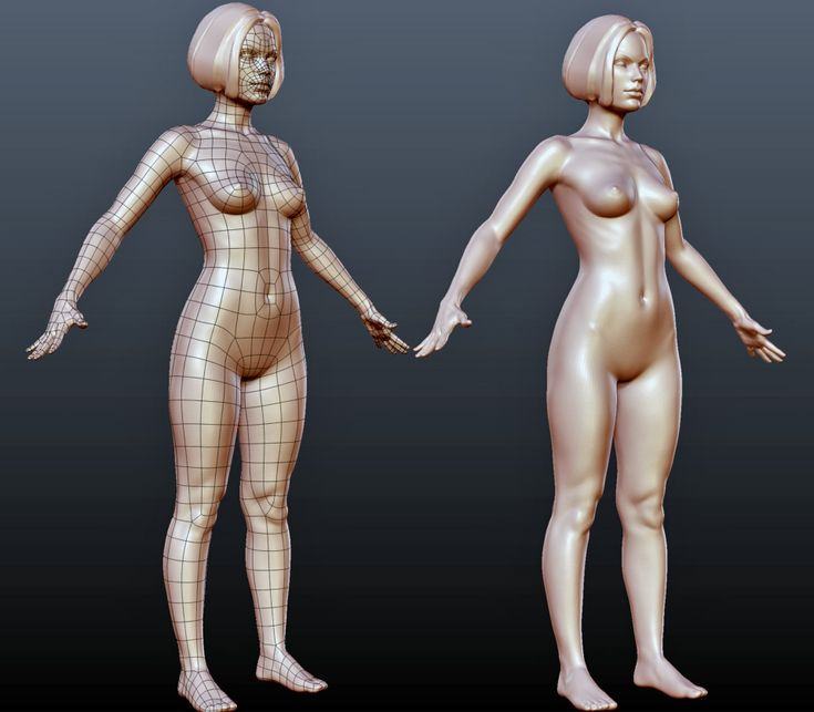 ZBrush Central eof3D thread, woman body topology flow.
