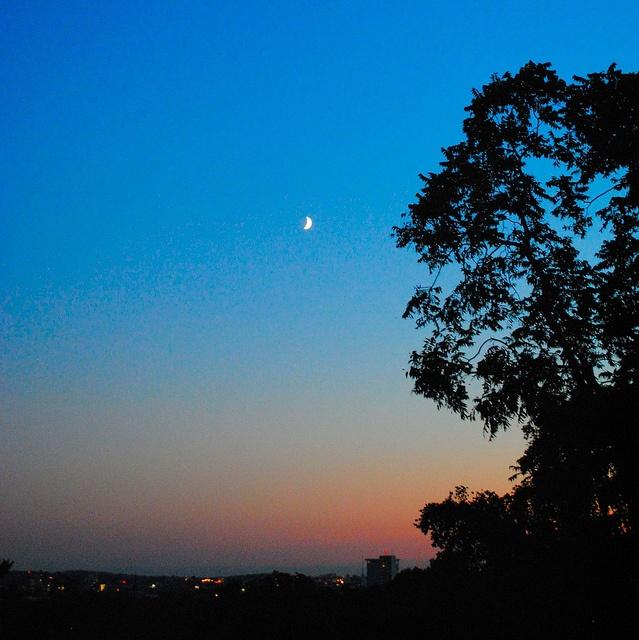 Crescent moon over Somerville