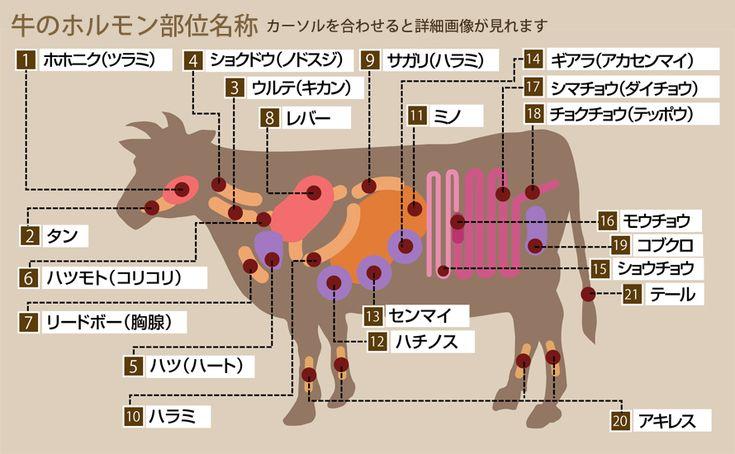 牛のホルモン部位別名称