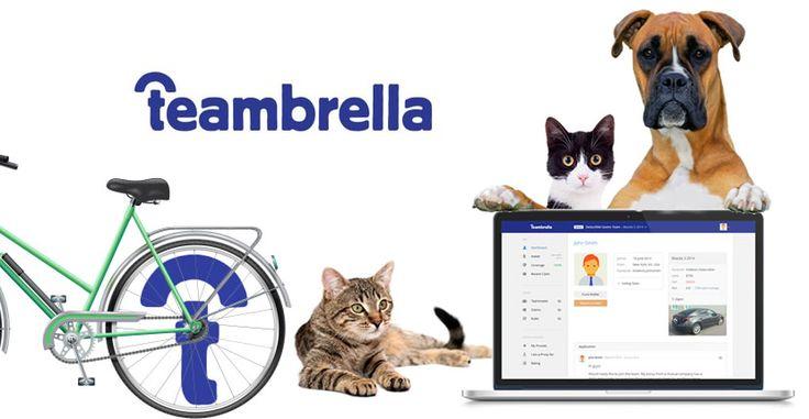 Flash Informativo: Teambrella el primer Seguro Blockchain ahora en América Latina   EspacioBit -   https://espaciobit.com.ve/main/2017/09/14/flash-informativo-teambrella-primer-seguro-blockchain-ahora-america-latina/ #Teambrella #Blockchain #Bitcoin #Seguro #Mutualismo #Peru #Argentina #Holanda