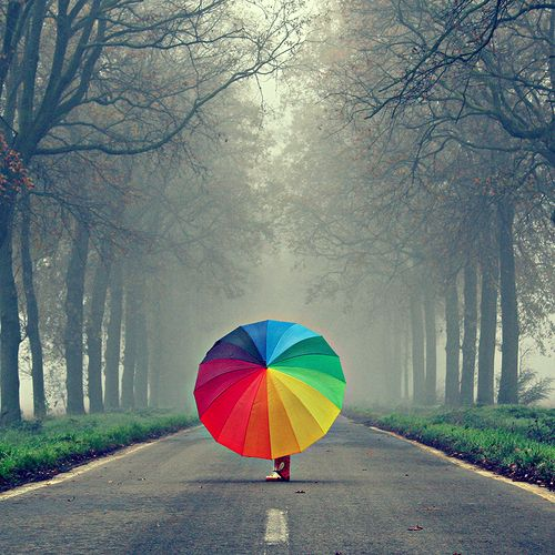 bring on the rain: The Roads, Umbrellas, Rainy Day, Rainbows Colors, Beautiful, Inspiration Pictures, Colors Wheels, Splash Of Colors, Grey