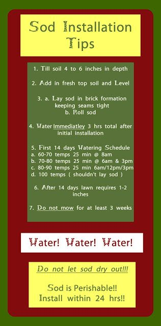 7 tips for sod installation