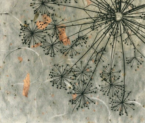 Dill Weed Seed Head Print by 88editions on Etsy