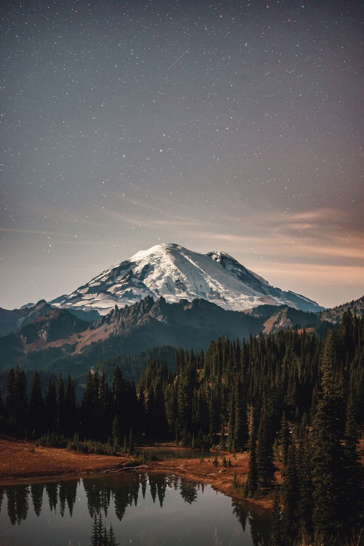 Mount Rainier under a starry sky [13652048] Photographed by Bryan Buchanan #reddit