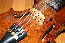 How to Buy Violin Strings