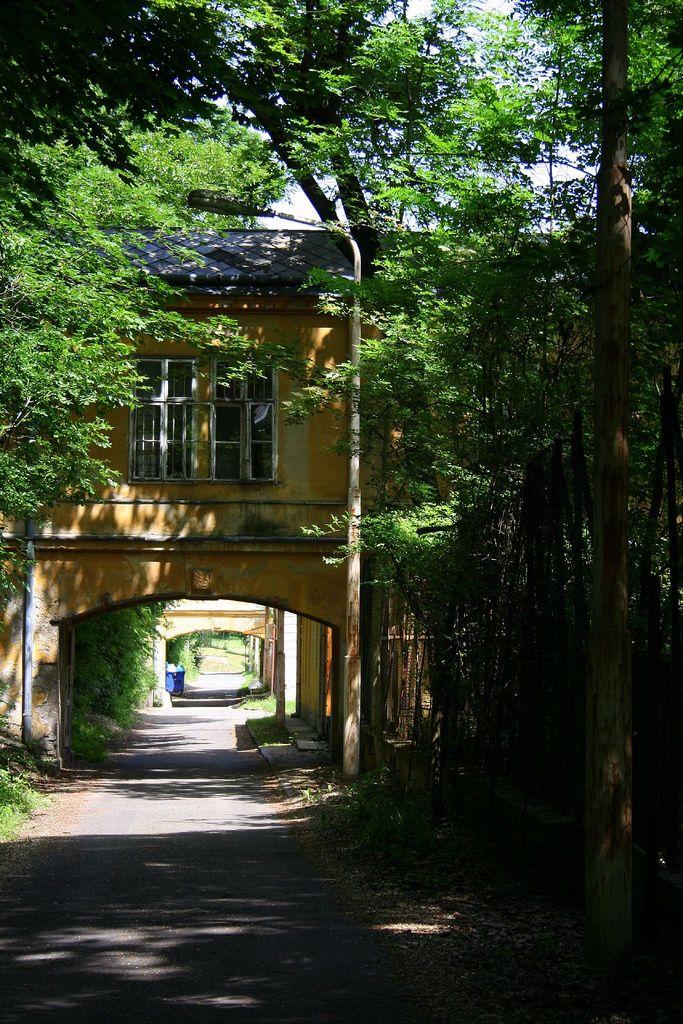 Országos Pszichiátriai és Neurológiai Intézet - OPNI - my favourite abandoned building in Budapest