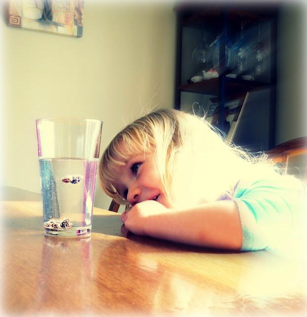 Kid tested:  Raisin Dancing Pinterest activity