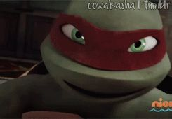 cowakasha:  You hesitated Donatello, why?