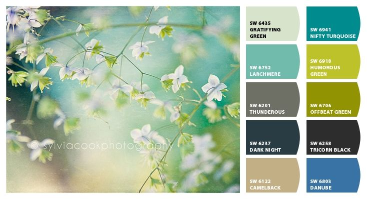 Soothing Colors Interiors Color Combinations