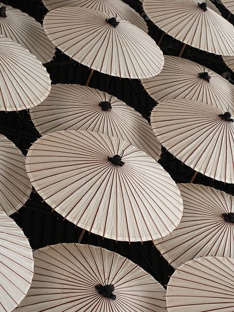 White Parasols on Black